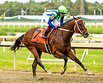 SEPT 25, 2021: Jackie's Warrior, ridden by Joel Rosario, easily wins the Gr.2  Gallant Bob Stakes, for 3-year olds, going 6 furlongs, at Parx Racing, Bensalem, PA. Sue Kawczynski/Eclipse Sportswire/CSM