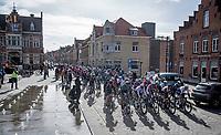 peloton rolling through town<br /> <br /> 83rd Gent-Wevelgem - in Flanders Fields (ME - 1.UWT)<br /> 1 day race from Ieper to Wevelgem (BEL): 254km<br /> <br /> ©kramon