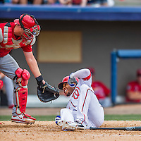 13 March 2016: Washington Nationals outfielder Ben Revere fouls one off his own left shoulder during a pre-season Spring Training game against the St. Louis Cardinals at Space Coast Stadium in Viera, Florida. The teams played to a 4-4 draw in Grapefruit League play. Mandatory Credit: Ed Wolfstein Photo *** RAW (NEF) Image File Available ***