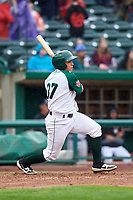 Fort Wayne TinCaps catcher Juan Fernandez (37) at bat during a Midwest League game against the Kane County Cougars at Parkview Field on May 1, 2019 in Fort Wayne, Indiana. Fort Wayne defeated Kane County 10-4. (Zachary Lucy/Four Seam Images)