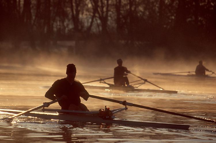 Rowing, single racing shells, rowers, sunrise, Seattle, Lake Washington, winter, Washington State, Pacific Northwest, USA,