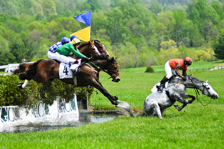 One of the competing horses can't catch his balance after going over the last jump before the finish line at The Virginia Gold Cup