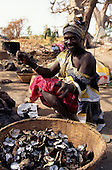 The Gambia. Woman shelling oysters.