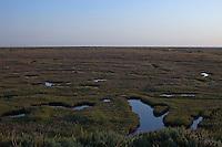Stiffkey, Norfolk, England, 08/08/2009..Stiffkey salt marshes.