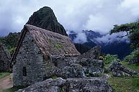 Amérique/Amérique du Sud/Pérou/Env de Cuzco : Le Machu Picchu- Détail habitat
