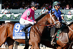 """LEXINGTON, KY - October 6, 2017.  #9 Heavenly Love and jockey Julien Leparoux before winning the 66th running of The Darley Alcibiades Grade 1 $400,000 """"Win and You're In Breeders' Cup Juvenile Fillies Division"""" for owner Debby Oxley and trainer Mark Casse.  Lexington, Kentucky. (Photo by Candice Chavez/Eclipse Sportswire/Getty Images)"""