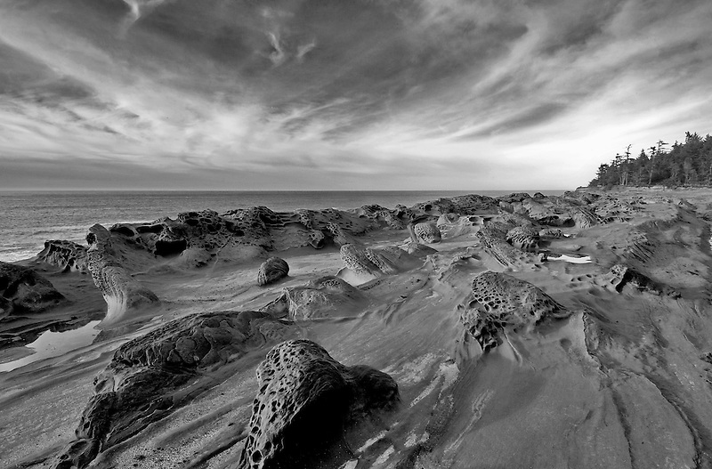 Rock formations and ocean at Shore Acres State Park, Oregon