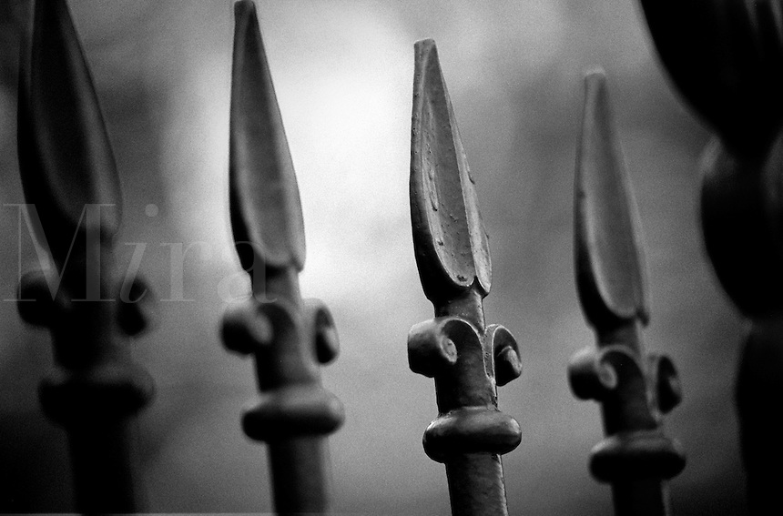Black & white detail of wrought iron fence.