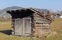 Hütte auf Viehweide  Oberstdorf im Allgäu, Bayern, Deutschland<br /> cabin on pasture in Oberstdorf, Allgäu, Bavaria,  Germany
