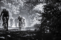 92th Schaal Sels 2017