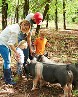 Josh McCullock and his family feed the pigs
