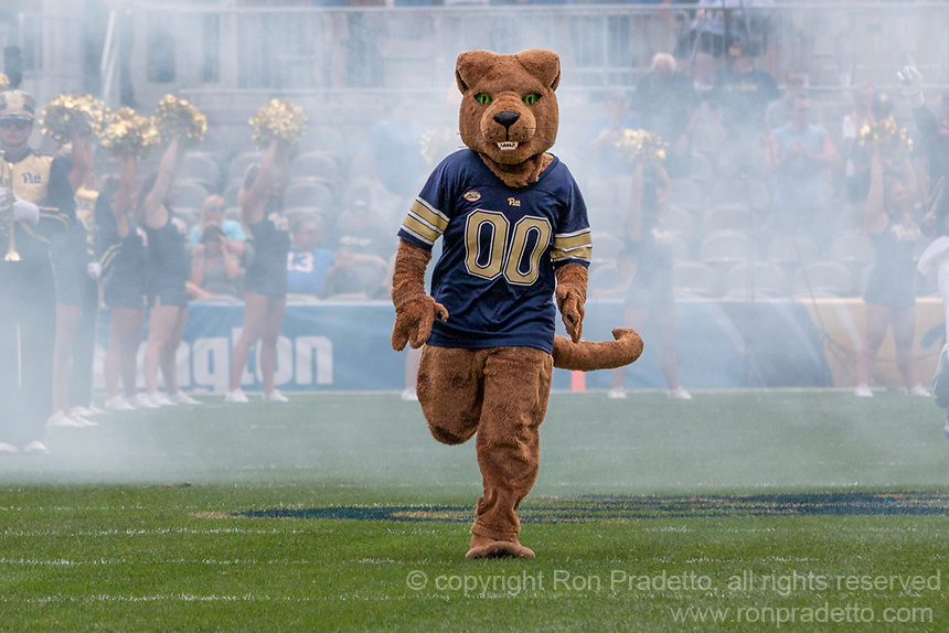 The Pitt Panther mascot ROC takes the field. The Pitt Panthers football team defeated the Georgia Tech Yellow Jackets 24-19 on September 15, 2018 at Heinz Field in Pittsburgh, Pennsylvania.