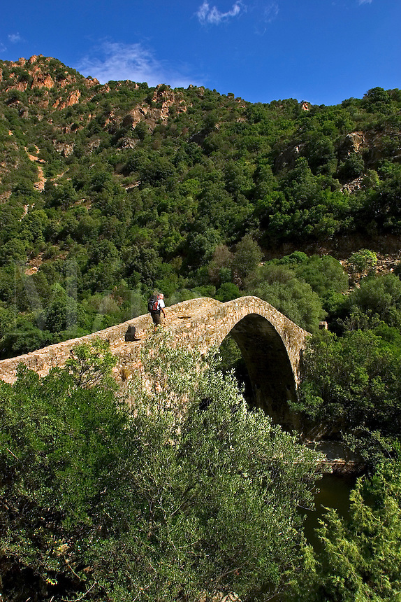 Corsica. France. Hiker on the Ponte Vecchiu, Genoese bridge over the River Porto near the Spelunca Gorges and the village of Ota. .