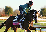 Union Gables, trained by trainer Todd A. Pletcher, exercises in preparation for the Breeders' Cup Juvenile Fillies Turf at Keeneland Racetrack in Lexington, Kentucky on November 4, 2020.