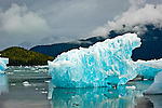 Floating Icebergs at Stikine-LeConte Wilderness, Tongass National Forest, Southeastern, Alaska, USA