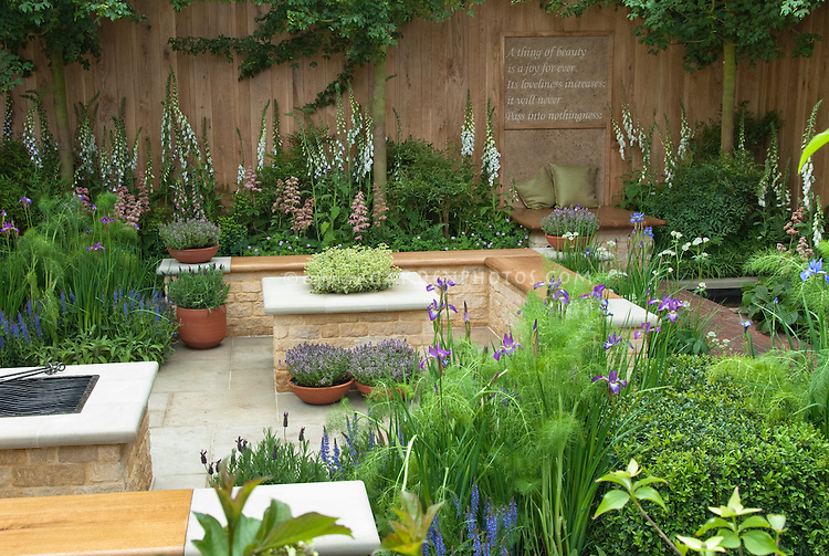 Beautiful herb and flowers interplanted patio garden: Keats A thing of beauty is a joy forever motto on garden fence wall, with bench, cushions, place to relax, foxglove white flowers, tree, privacy in backyard
