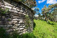 Ruine eines Rundhaus mit Relief, Festung von Kuelap des Volk der Chachapoya, Provinz Luya, Region Amazonas, Peru, Südamerika