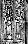 Ta Prohm Temple Devatas - Carved stone Devatas, Ta Prohm Temple, Angkor, Cambodia