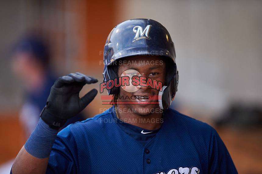 AZL Brewers Blue Orveo Saint (30) is congratulated by teammates after scoring a run during an Arizona League game against the AZL Rangers on July 11, 2019 at American Family Fields of Phoenix in Phoenix, Arizona. The AZL Rangers defeated the AZL Brewers Blue 5-2. (Zachary Lucy/Four Seam Images)