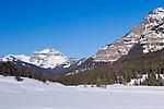 Lamar Valley, Yellowstone NP, WY, USA
