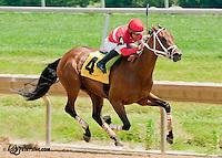 Tuatara winning at Delaware Park on 6/26/13