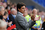 14th August 2013 - Cardiff - UK : Wales v Republic of Ireland - Vauxhall International Friendly at Cardiff City Stadium : Wales Manager Chris Coleman.