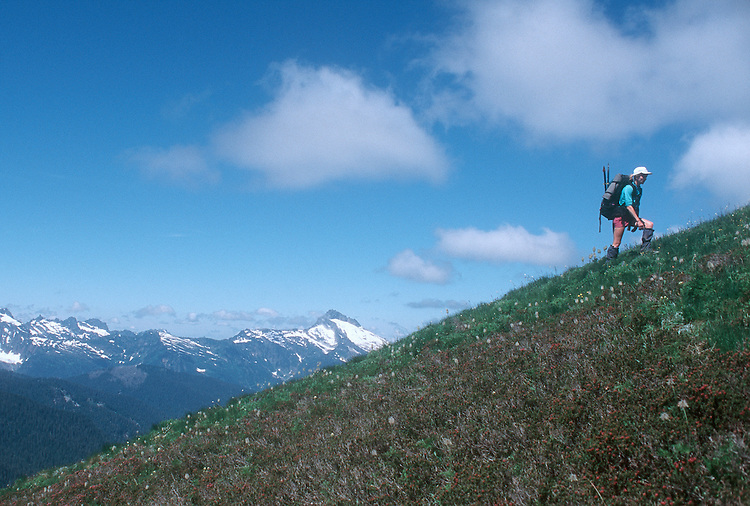 Woman hiking, Henry M. Jackson Wilderness Area, Cascade Mountains, Pacific Northwest, Washington State, U.S.A., North America, Maggie Coon,