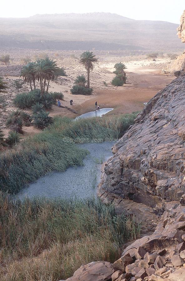 Guelta d'Amazmaz. Mauritania. AfriqueAmazmaz water hole. Mauritania. Africa