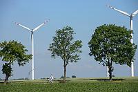 POLAND, Rusiec, Vestas windmill / POLEN, Rusiec, Vestas Windkraftanlagen