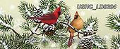 Liz,CHRISTMAS SYMBOLS, WEIHNACHTEN SYMBOLE, NAVIDAD SÍMBOLOS, LizDillon, paintings+++++,USHCLD0204,#XX#