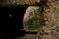 Il Giardino di Ninfa e le rovine della città medievale..The Garden of Nymph and the ruins of the medieval city.