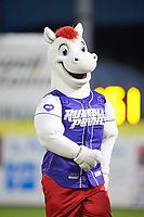 Binghamton Rumble Ponies mascot Rowdy during a game against the Akron RubberDucks on May 12, 2017 at NYSEG Stadium in Binghamton, New York.  Akron defeated Binghamton 5-1.  (Mike Janes/Four Seam Images)