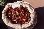 TUR, Tuerkei, Tuerkische Aegaeis, Aegaeis, Kusadasi, Wochenmarkt, Sack mit Pfefferschoten, Peperoni, Die Peperoni, auch Pfefferschote genannt, ist eine besonders scharfe Variante der Paprika.<br /> [Fuer die Nutzung gelten die jeweils gueltigen Allgemeinen Liefer-und Geschaeftsbedingungen. Nutzung nur gegen Verwendungsmeldung und Nachweis. Download der AGB unter http://www.image-box.com oder werden auf Anfrage zugesendet. Freigabe ist vorher erforderlich. Jede Nutzung des Fotos ist honorarpflichtig gemaess derzeit gueltiger MFM Liste - Kontakt, Uwe Schmid-Fotografie, Duisburg, Tel. (+49).2065.677997, fotofinder@image-box.com, www.image-box.com]