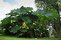 13/08/16<br />