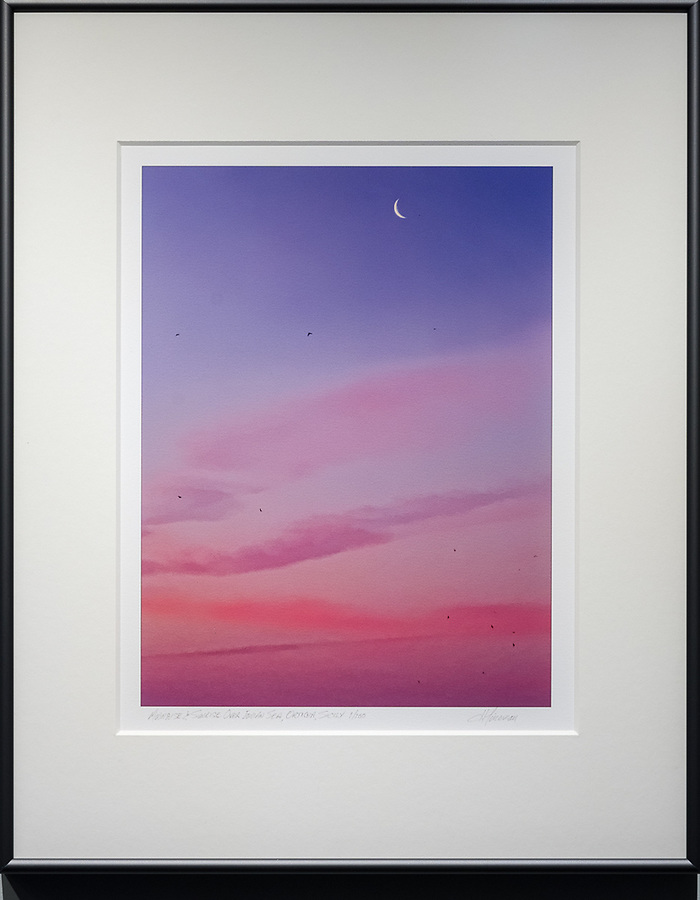 "Framed Size 20""h x 16""w, $360<br />