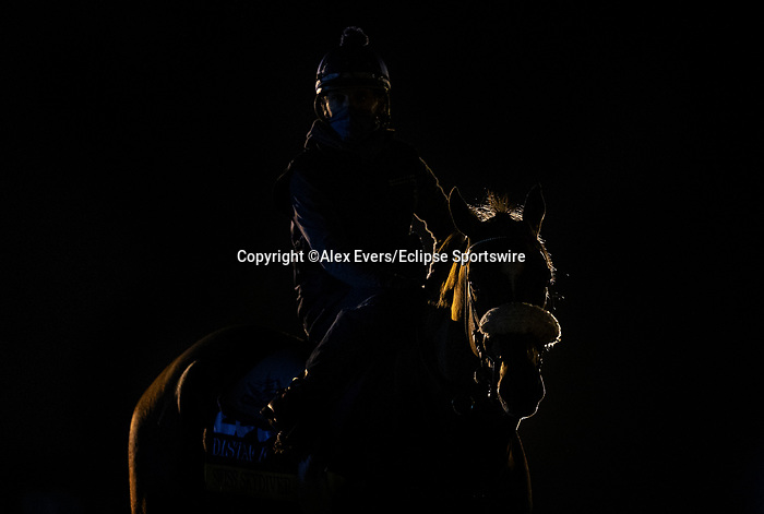 November 5, 2020: Swiss Skydiver, trained by trainer Kenneth G. McPeek, exercises in preparation for the Breeders' Cup Distaff at Keeneland Racetrack in Lexington, Kentucky on November 5, 2020. Alex Evers/Eclipse Sportswire/Breeders Cup