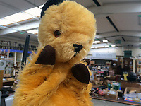 "BNPS.co.uk (01202 558833)<br /> Pic: Hansons/BNPS<br /> <br /> Pictured: The Original Sooty Puppet at Hansons' Derbyshire saleroom.<br /> <br /> An iconic old Sooty TV puppet which Harry Corbett gave to a friend has emerged for sale for £1,200.<br /> <br /> The children's show inventor Harry Corbett gifted it to biology teacher Paul Mouncey, from Comrie, Perthshire, Scotland, in the mid-1970s.<br /> <br /> His daughter Tina Stewart, a veterinary receptionist from Dunblane, is now selling the hand puppet with Hanson's Auctioneers, of Etwall, Derbys.<br /> <br /> Mrs Stewart, a veterinary receptionist from Dunblane, Scotland, said: ""We took Sooty along with us and after the show met Richard - who immediately new our puppet was an original."