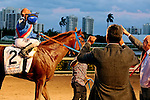 HALLANDALE BEACH, FL - MARCH 04:  Gunnevera (KY) with jockey Javier Castellano up celebrate with  owner, Salomon Del Valle, before heading to the winners circle after winning the $400,000 Xpressbet Fountain Of Youth Stakes (Grade II) at Gulfstream Park on March 04, 2017 in Hallandale Beach, Florida. (Photo by Liz Lamont/Eclipse Sportswire/Getty Images)