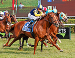 Sadler's Joy (no. 3) wins the Grade 1 Sword Dancer Stakes August 26 at Saratoga Race Course, Saratoga Springs, NY.  The winner, ridden by Julien Leparoux and trained by  Thomas Albertrani,  surged to the lead in the last few strides to win by a half length in the mile and one half race on the turf against six opponents.  (Bruce Dudek/Eclipse Sportswire)