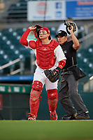 Palm Beach Cardinals catcher Alexis Wilson (26) and umpire Kelvis Velez during a Florida State League game against the Daytona Tortugas on April 11, 2019 at Roger Dean Stadium in Jupiter, Florida.  Palm Beach defeated Daytona 6-0.  (Mike Janes/Four Seam Images)