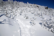 North Twin Trail during the winter months in the White Mountains, New Hampshire USA