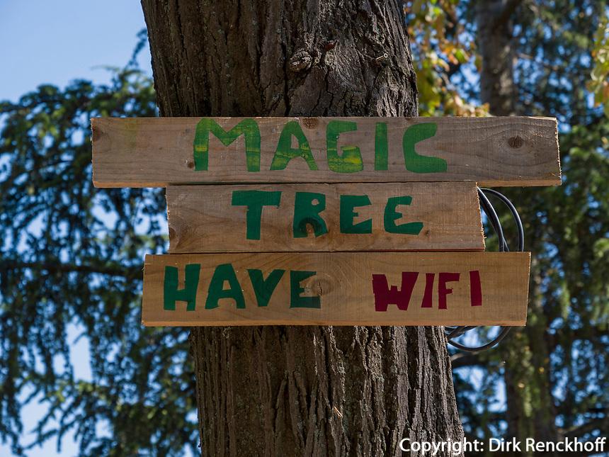 Baum mit WiFi in der Festung, Belgrad, Serbien, Europa<br /> treee with WiFi in the fortress,  Belgrade, Serbia, Europe