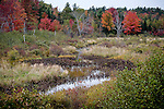 Mill Brook fills Taunton Bay in Franklin, Downeast, ME