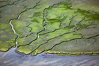 aerial photograph tidal wetland, San Francisco Bay, California