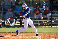 Haden Youngblood (8) of Fletcher, North Carolina during the Baseball Factory All-America Pre-Season Rookie Tournament, powered by Under Armour, on January 14, 2018 at Lake Myrtle Sports Complex in Auburndale, Florida.  (Michael Johnson/Four Seam Images)