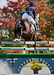 Erin Sylvester and No Boundaries clear a fence during Stadium Jumping at the Dansko Fair Hill International 3-Day Event in Fair Hill, Maryland on October 16, 2011.