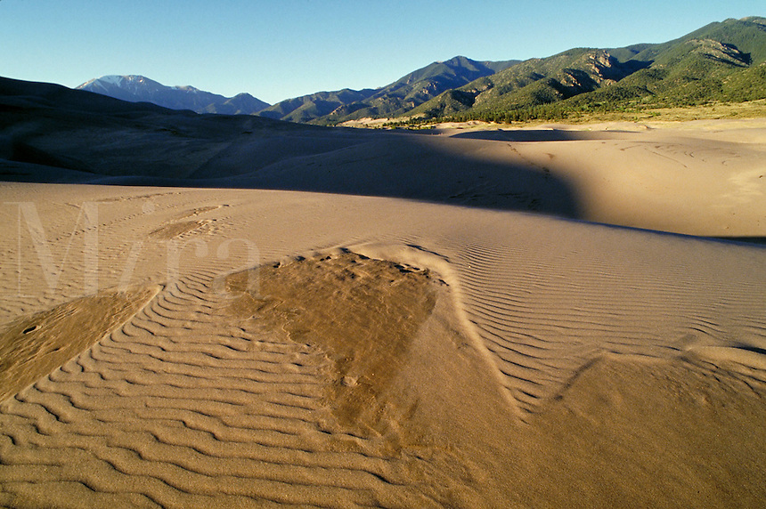 Rippled pattern on surface of sand dunes,. Colorado USA Great Sand Dunes National Monument.