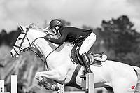 NZL-Oliver Croucher rides Waitangi Surf. Final-1st. Class: 23 - Alltech Horse 1.35- 1.40m. 2020 NZL-Fiber Fresh GP SJ Show Spring Series Show. Woodhill Sands. Sunday 20 September. Copyright Photo: Libby Law Photography