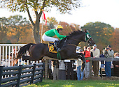 With no competitor within earshot, Patriot's Path and Darren Nagle fly over the last jump in the NewJersey Hunt Cup at Far Hills, going on to win by more than 30 lengths.
