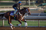 OCT 27 2014:Unbridled Forever, trained by Dallas Stewart, exercises in preparation for the Breeders' CupDistaff  at Santa Anita Race Course in Arcadia, California on October 27, 2014. Kazushi Ishida/ESW/CSM